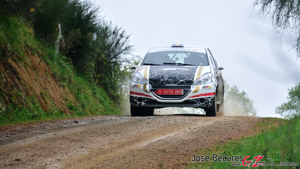 ii_rally_de_curtis_2015_30_20150426_1829275927
