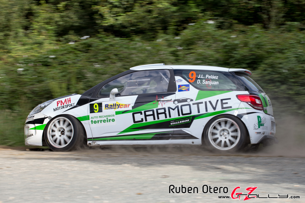 rally_de_ferrol_2014_-_ruben_otero_49_20150312_1995029635
