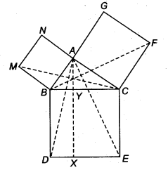 NCERT Solutions for Class 9 Maths Areas of Parallelograms and Triangles Ex 9.4 Q8