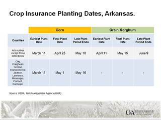 crop insurance planting dates - corn & sorghum