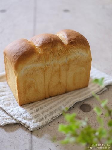 苺酵母の食パン 20190509-DSCT1195 (2)