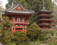 Japanese Garden SR600457