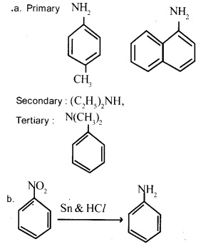 Plus Two Chemistry Chapter Wise Previous Questions Chapter 13 Amines 2