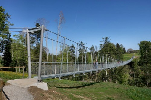 Suspension Bridge Grub SG - AR