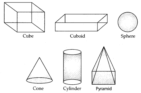 Visualising Solid Shapes Class 7 Notes Maths Chapter 15
