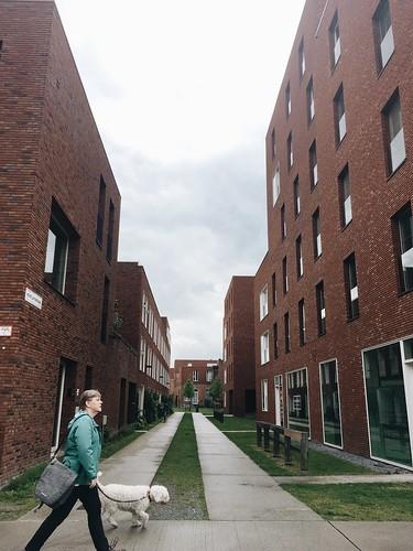 Groen Kwartier y PAkt | Un oasis verde en medio de Amberes
