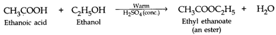 Carbon and its Compounds Class 10 Notes Science Chapter 4 5