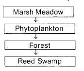 Plus Two Botany Chapter Wise Previous Questions Chapter 7 Ecosystem 7
