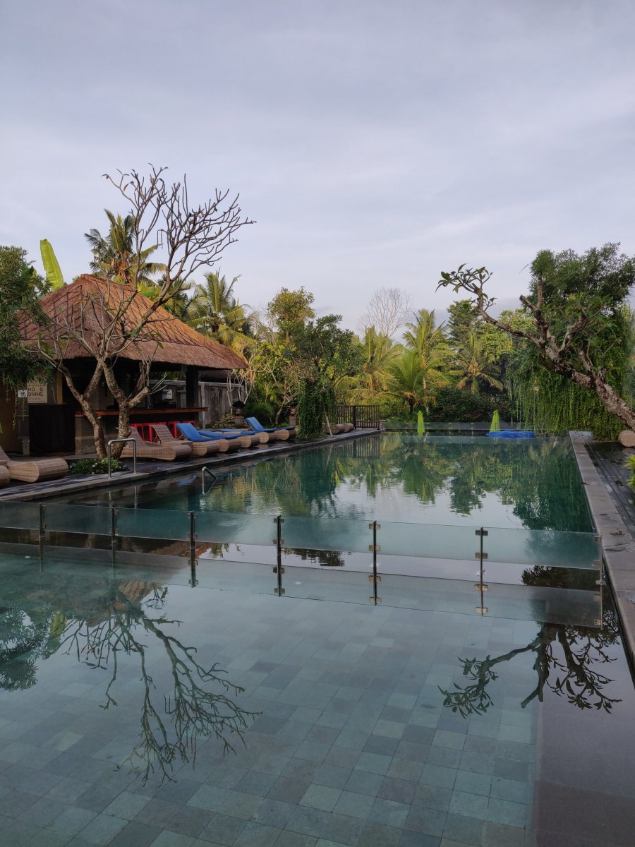 Swimming Pool Element by Westin Ubud Bali