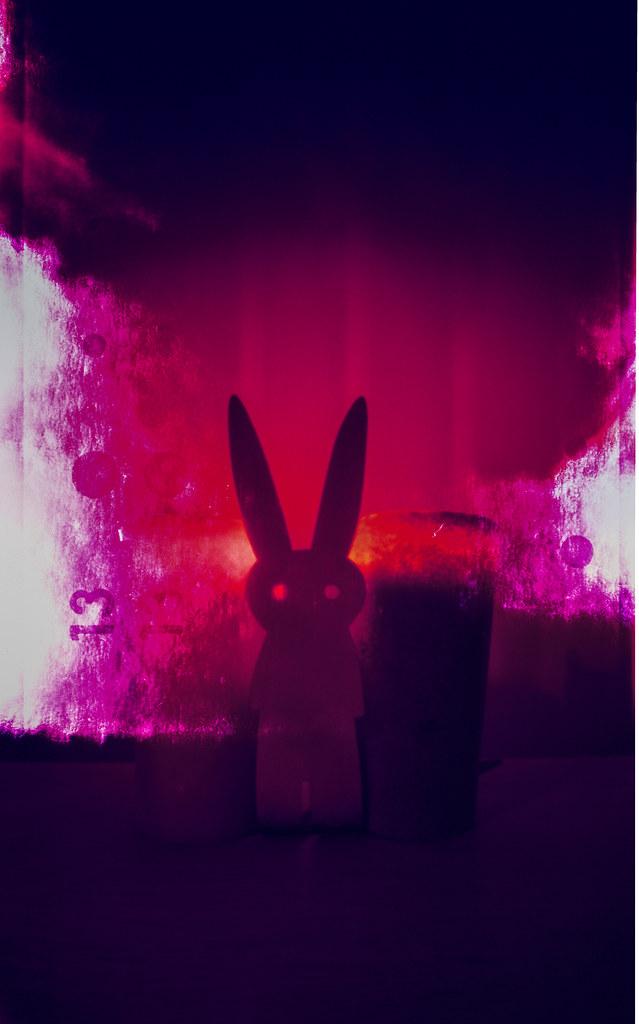Mr Rabbit, Leaking #ONDUPinhole #Pinhole #WPPD2019