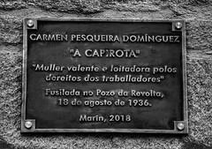 A Capirota, Placa