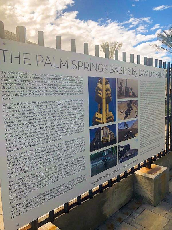 The Palm Springs Babies