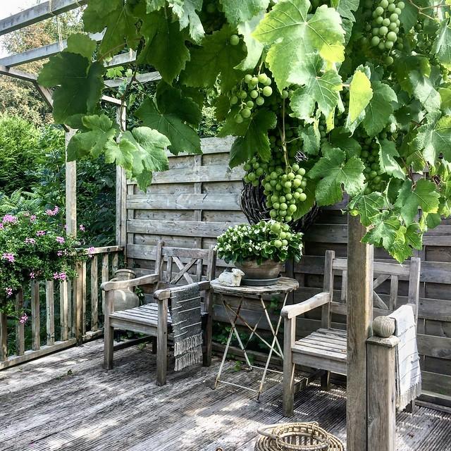 Houten stoelen landelijke tuin met vlonders