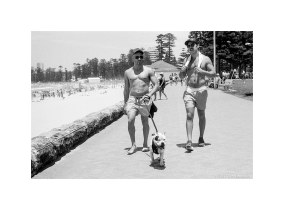 Manly beach summer  #702