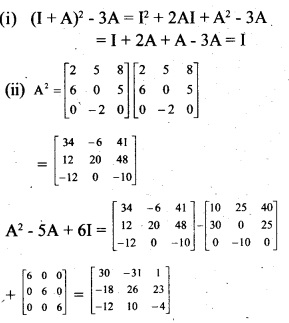 Plus Two Maths Chapter Wise Previous Questions Chapter 3 Matrices 12