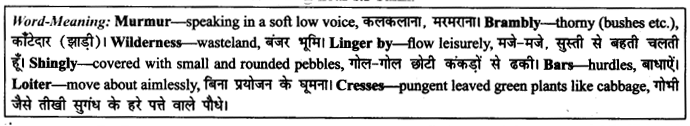 NCERT Solutions for Class 9 English Literature Chapter 6 The Brook 16