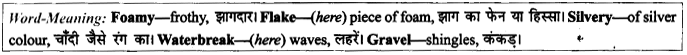 NCERT Solutions for Class 9 English Literature Chapter 6 The Brook 12
