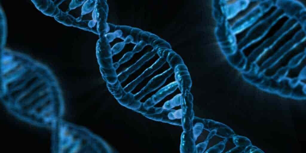 mieux-contrôler-CRISPR