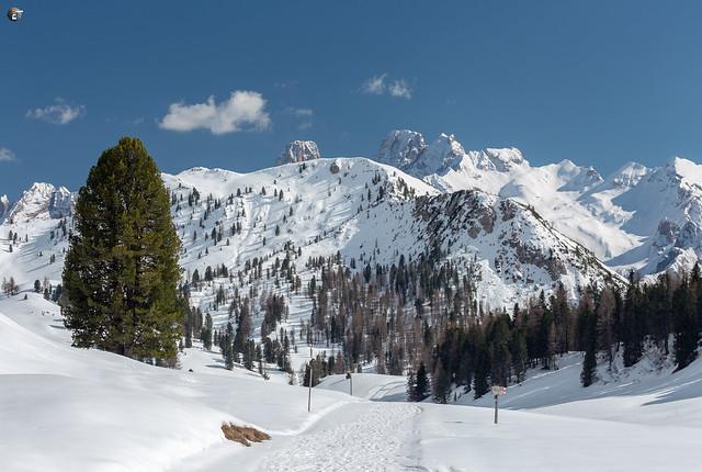 Monte Cristallo View from Prato Piazza