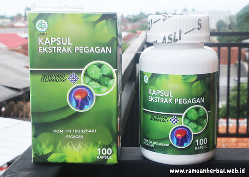 Brain Nutrition Kapsul Ekstrak Pegagan