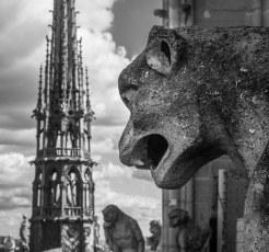 Notre-Dame-Gargoyle-Anguish.jpg