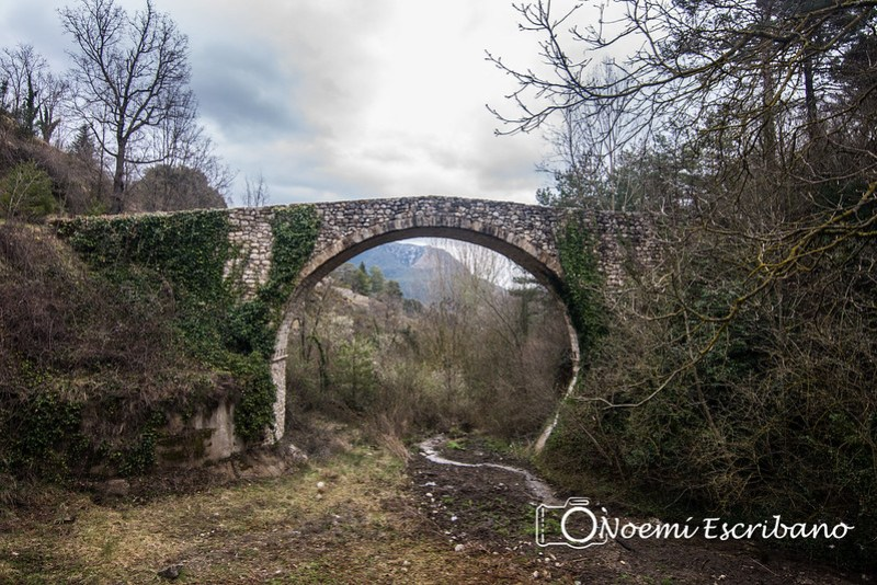 Pont Romànic de Vallonga