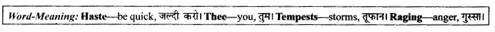 NCERT Solutions for Class 9 English Literature Chapter 9 Lord Ullin's Daughter 11