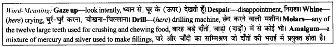 NCERT Solutions for Class 9 English Literature Chapter 11 Oh, I Wish I'd Looked After Me Teeth 6