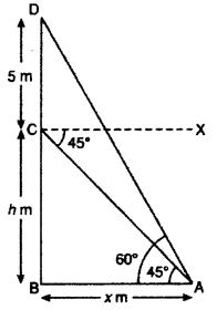 RBSE Solutions for Class 10 Maths Chapter 8 Height and Distance 3Q.11.1