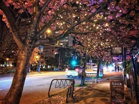 Lovely night where Denman starts. #veryvancouver #westend #westendvancouver #photos604 #vancouverbc #vancouver #denmanstreet