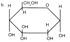 Plus Two Chemistry Chapter Wise Previous Questions Chapter 14 Biomolecules 1
