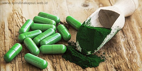 Obat Maag Spirulina