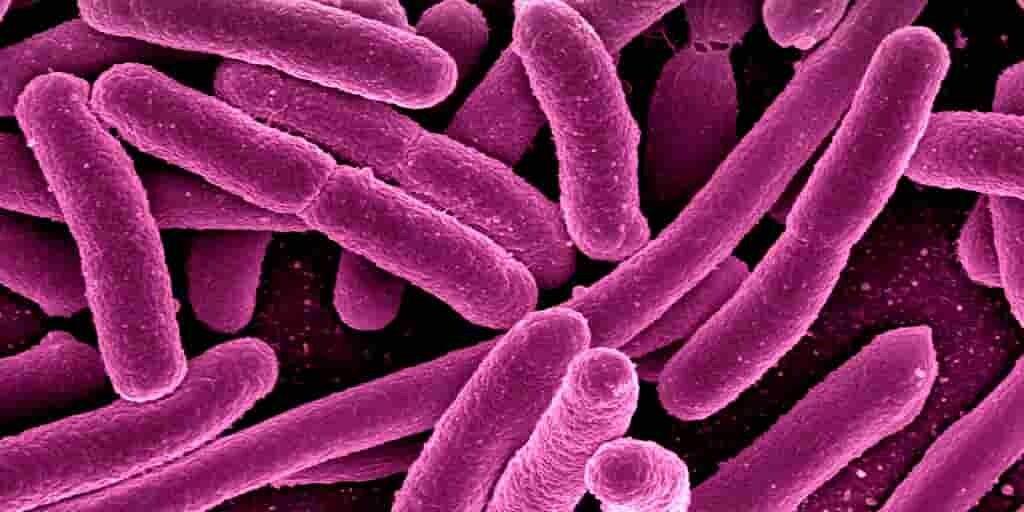 tuberculose-nouveau-composé-contre-résistance-aux-médicaments