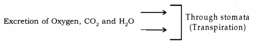 Life Processes Class 10 Notes Science Chapter 6 24