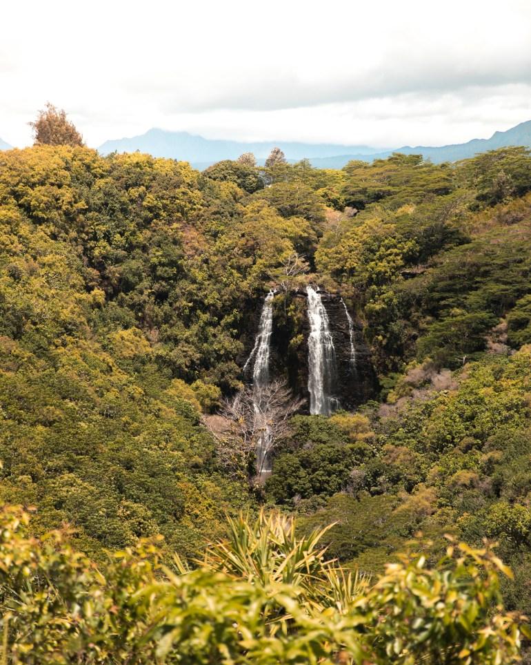OPAEKAA FALLS kauai