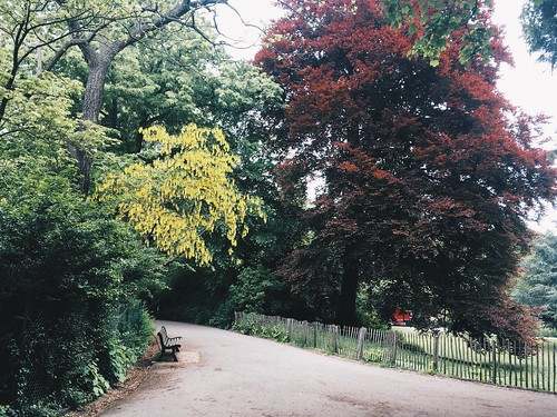 Los oasis verdes de Amberes