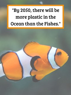 world ocean day 2019 posters