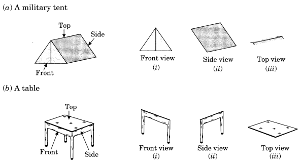 NCERT Solutions for Class 8 Maths Chapter 10 Visualising Solid Shapes Q4.1