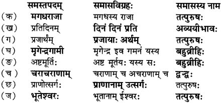 RBSE Solutions for Class 12 Sanskrit विजेत्र Chapter 7 नन्दिनीकथा 3