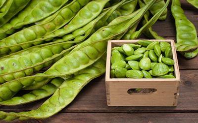 Efek Samping Samping Makan Petai Bagi Penderita Asam Urat