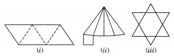 Visualising Solid Shapes Class 7 Extra Questions Maths Chapter 15 Q14