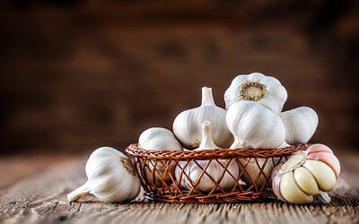 Cara Mengkonsumsi Bawang Putih untuk Benjolan Payudara