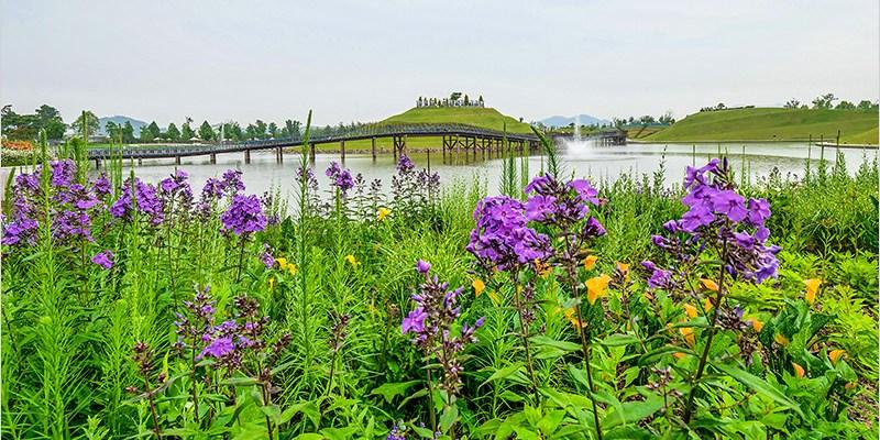 韓國全羅南道景點   順天灣國家園林+順天灣自然生態公園-探訪百花齊放,壯麗的自然景觀;欣賞有如海上波浪的蘆葦田自然景區。