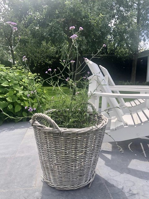 Rieten mand met plant witte houten tuinstoelen