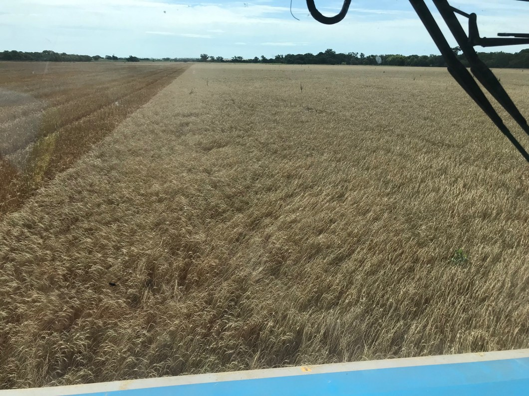 High Plains Harvesting