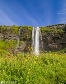 Iceland - 5968