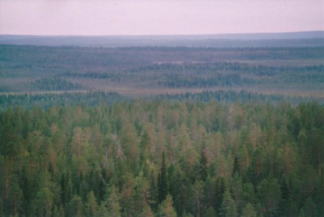 Vattunkivaara, Lappland