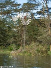 Kenya - 2386