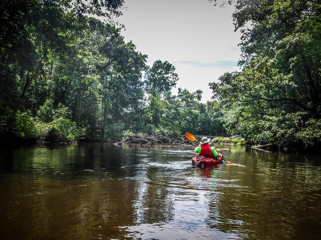 2019-07-06 Edisto River from Bobcat Landing