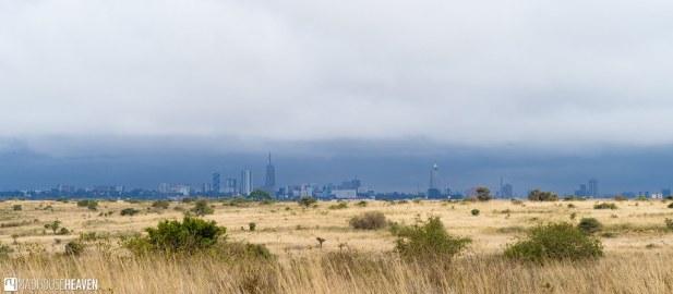 Kenya - 2939